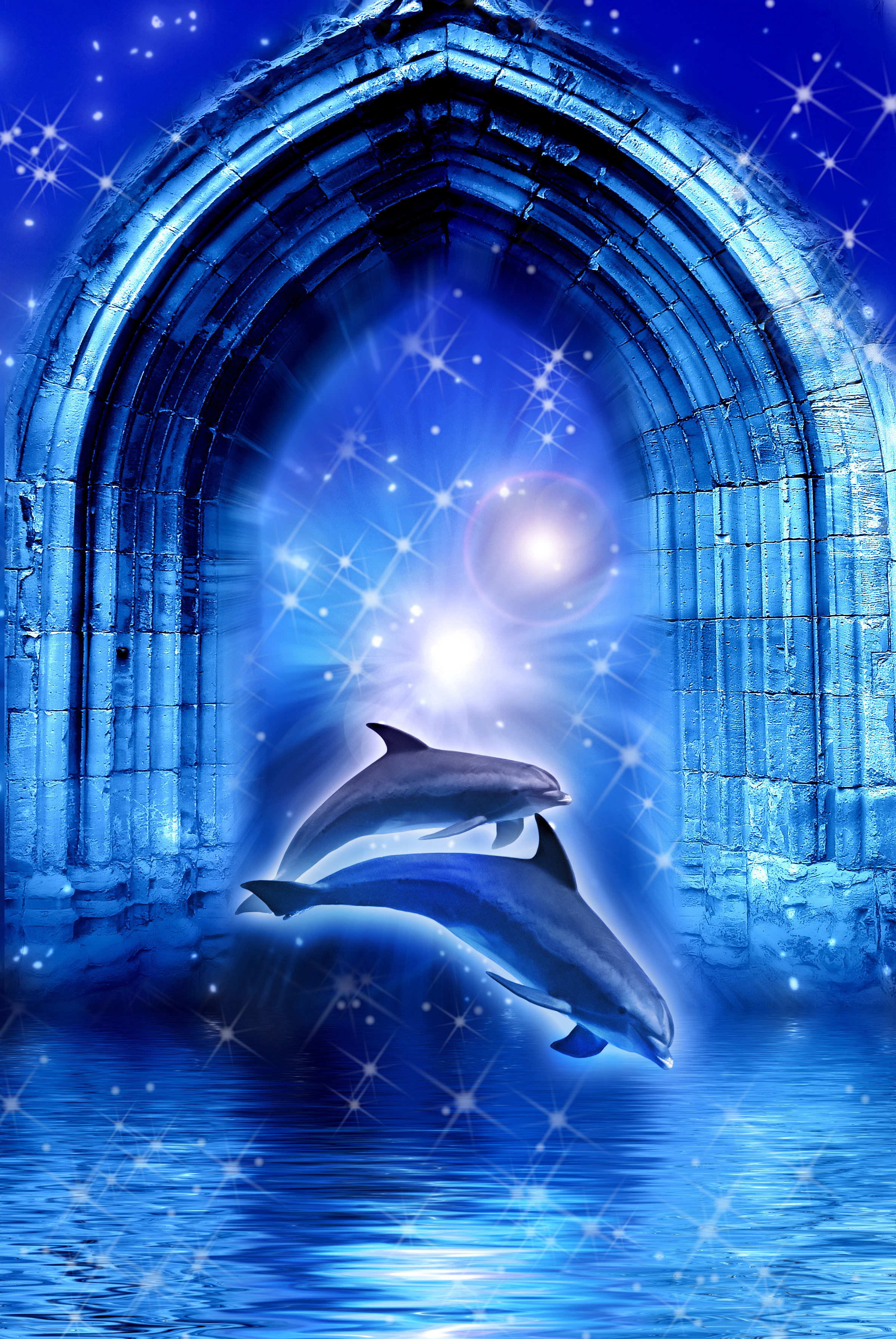 Save Our Dolphins Help Stop Mass Dolphin Slaughter In