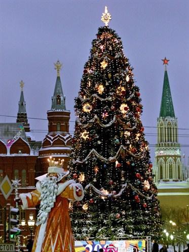 NY tree Russia 2