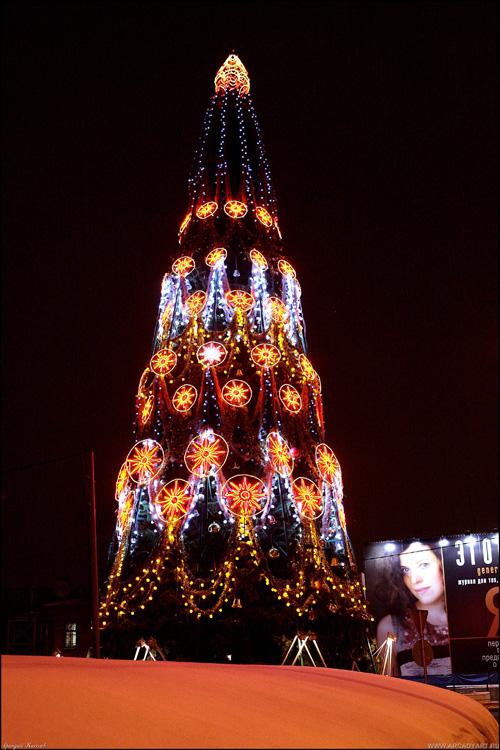 NY tree Russia 5
