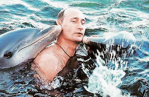 putin dolphins