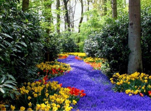 a river of spring-flowers