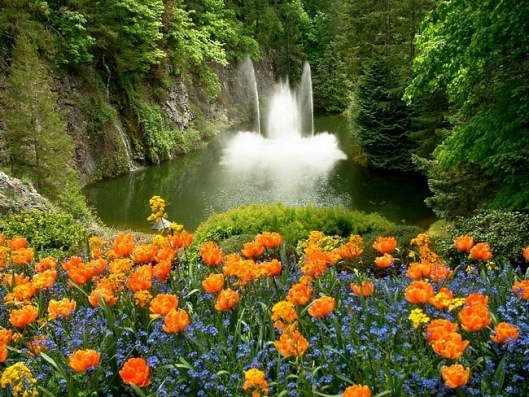 flowers with waterfall